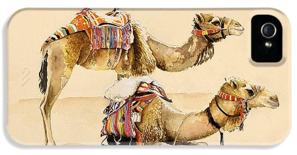 Camels From Petra IPhone 5s Case by Alison Cooper