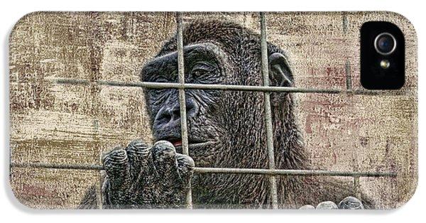 Gorilla iPhone 5s Case - Captivity by Tom Mc Nemar