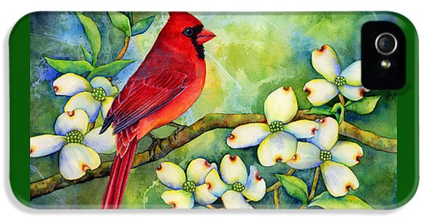 Cardinal On Dogwood IPhone 5s Case by Hailey E Herrera