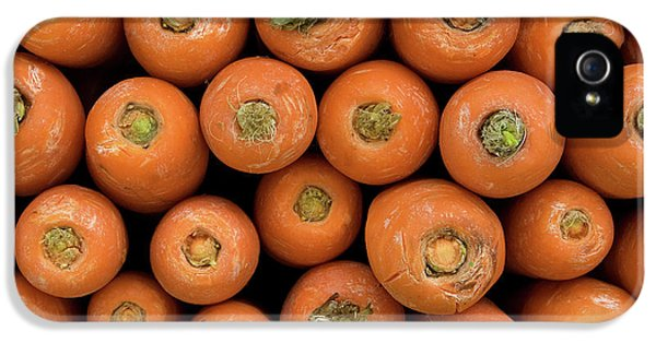 Carrots IPhone 5s Case