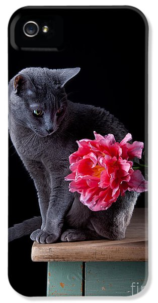 Tulip iPhone 5s Case - Cat And Tulip by Nailia Schwarz