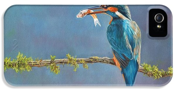 Kingfisher iPhone 5s Case - Catch Of The Day by David Stribbling