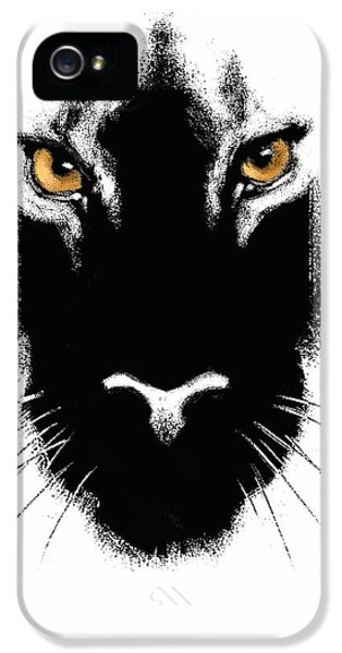 Leopard iPhone 5s Case - Cat's Eyes by Aaron Blaise