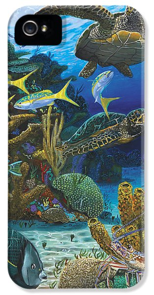 Cayman Turtles Re0010 IPhone 5s Case by Carey Chen