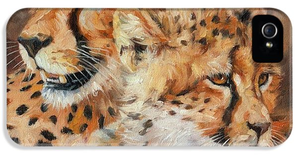 Cheetah And Cub IPhone 5s Case by David Stribbling