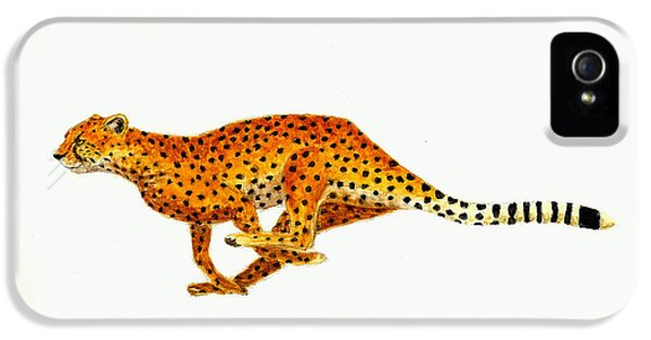 Cheetah IPhone 5s Case by Michael Vigliotti