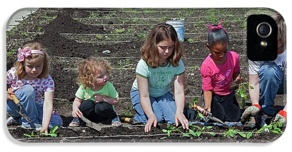 Spinach iPhone 5s Case - Children At Work In A Community Garden by Jim West
