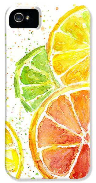 Citrus Fruit Watercolor IPhone 5s Case by Olga Shvartsur