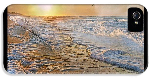 Osprey iPhone 5s Case - Coastal Paradise by Betsy Knapp