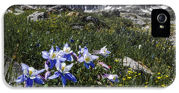 Colorado Columbines IPhone 5s Case