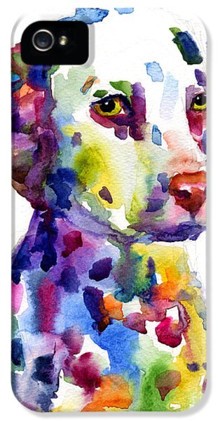 Colorful Dalmatian Puppy Dog Portrait Art IPhone 5s Case by Svetlana Novikova