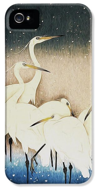 Cranes  IPhone 5s Case by Shanina Conway