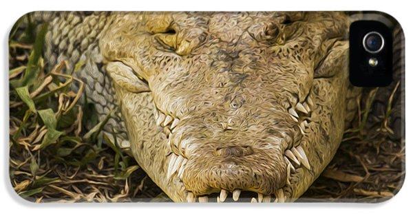 Crocodile iPhone 5s Case - Crocodile by Aged Pixel