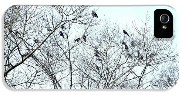 Crow Trees IPhone 5s Case