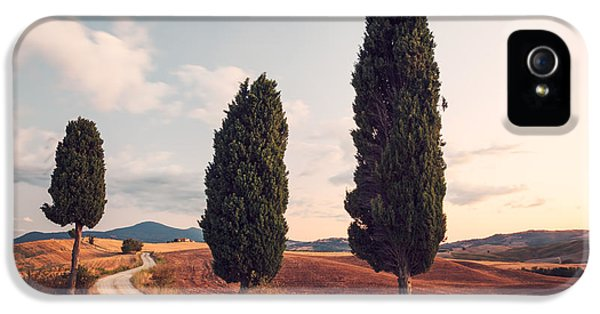 Cypress Lined Road In Tuscany IPhone 5s Case by Matteo Colombo