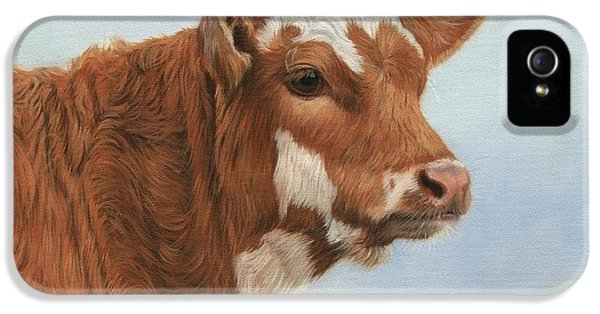 Cow iPhone 5s Case - Daisy by David Stribbling