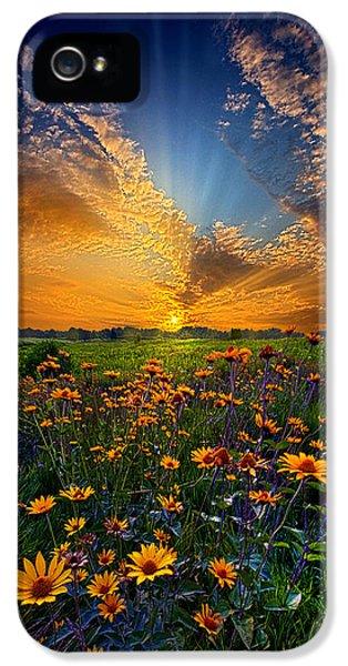 Daisy Dream IPhone 5s Case
