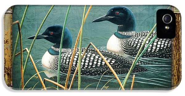 Loon iPhone 5s Case - Deco Loons by JQ Licensing