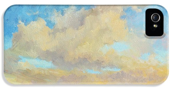 Desert Clouds IPhone 5s Case