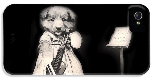 Violin iPhone 5s Case - Dog Serenade by Mountain Dreams