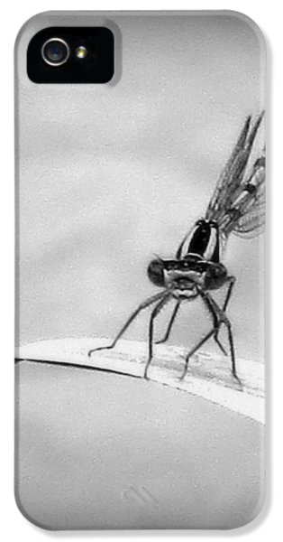 IPhone 5s Case featuring the photograph Donna The Damselfly by Karen Shackles