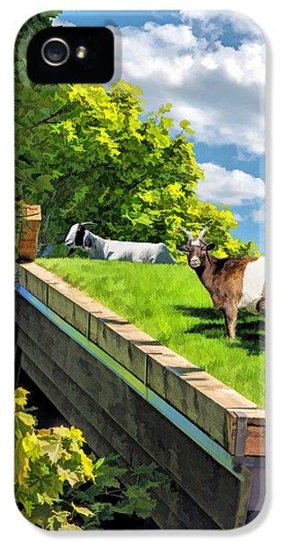 Door County Al Johnsons Swedish Restaurant Goats IPhone 5s Case