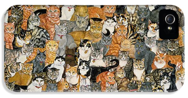 Double Cat Spread IPhone 5s Case