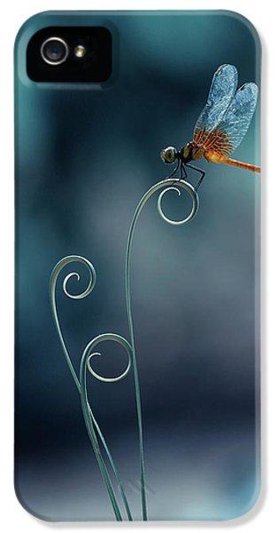 Macro iPhone 5s Case - Dragonfly by Ridho Arifuddin