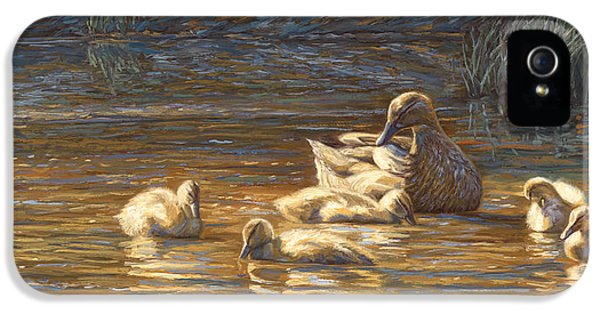 Ducks IPhone 5s Case by Lucie Bilodeau