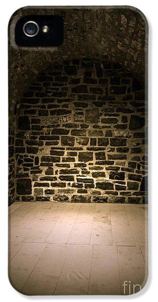 Dungeon iPhone 5s Case - Dungeon by Edward Fielding