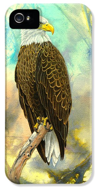 Eagle In Abstract IPhone 5s Case by Paul Krapf