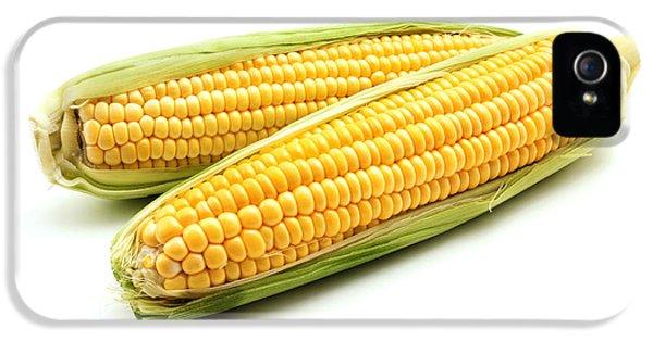 Ears Of Maize IPhone 5s Case by Fabrizio Troiani