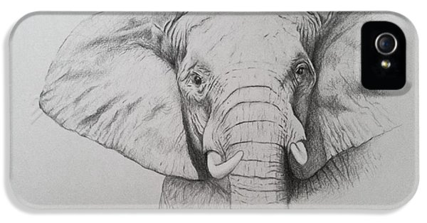 Elephant iPhone 5s Case - Elephant by Ele Grafton