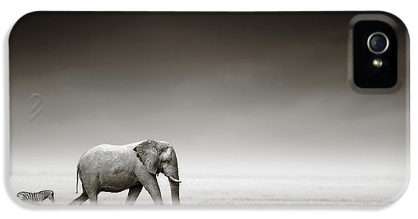 Elephant iPhone 5s Case - Elephant With Zebra by Johan Swanepoel