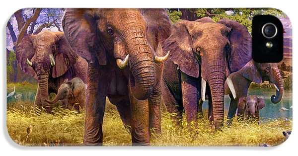 Elephants IPhone 5s Case by Jan Patrik Krasny