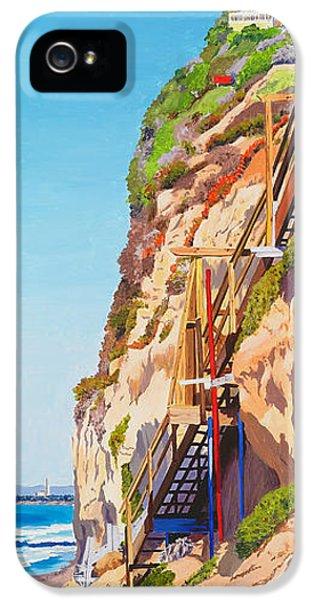 Seagull iPhone 5s Case - Encinitas Beach Cliffs by Mary Helmreich