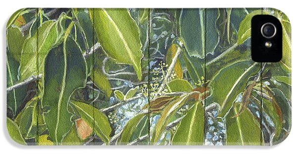 Far North Queensland iPhone 5s Case - Euca - Leaves Section by Kerryn Madsen-Pietsch
