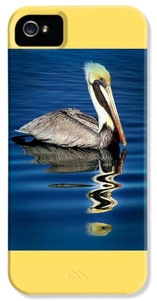 Pelican iPhone 5s Case - Eye Of Reflection by Karen Wiles
