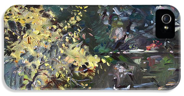 Goose iPhone 5s Case - Fall By The Pond by Ylli Haruni