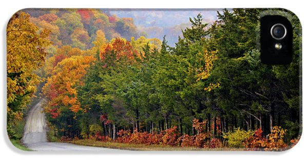 Cricket iPhone 5s Case - Fall On Fox Hollow Road by Cricket Hackmann