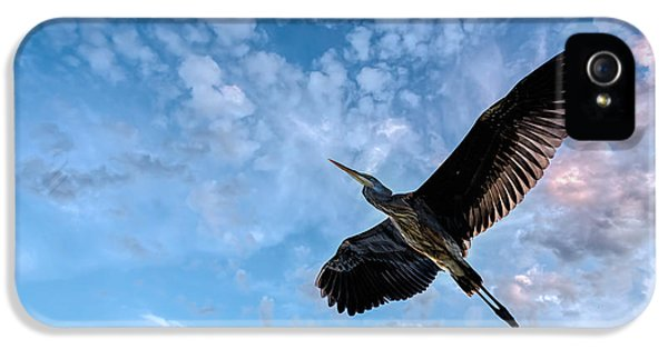 Heron iPhone 5s Case - Flight Of The Heron by Bob Orsillo