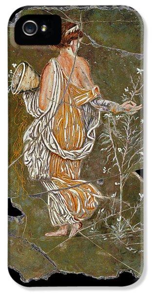 Bogdanoff iPhone 5s Case - Flora by Steve Bogdanoff