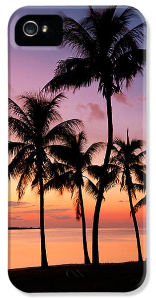 Beach iPhone 5s Case - Florida Breeze by Chad Dutson