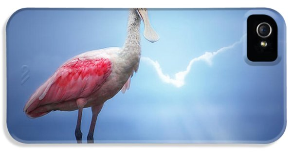 Foggy Morning Spoonbill IPhone 5s Case
