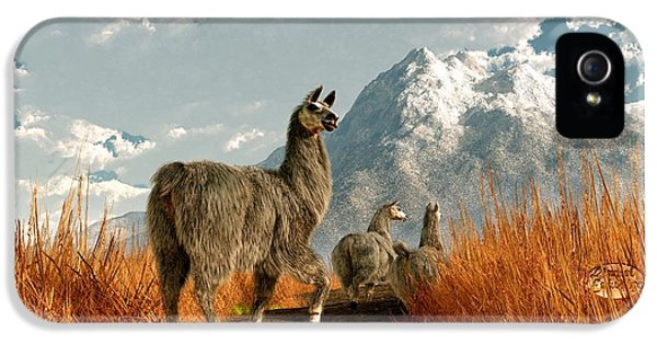 Follow The Llama IPhone 5s Case by Daniel Eskridge