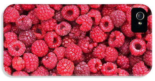 Raspberry iPhone 5s Case - Freshly Picked by Delphimages Photo Creations