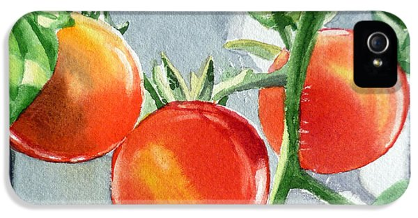 Garden Cherry Tomatoes  IPhone 5s Case by Irina Sztukowski