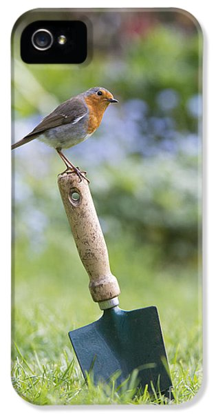 Garden iPhone 5s Case - Gardeners Friend by Tim Gainey