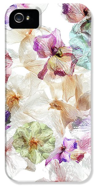 Orchid iPhone 5s Case - Ghost Orchids by Ludmila Shumilova