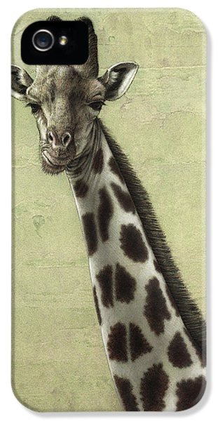 Giraffe IPhone 5s Case by James W Johnson